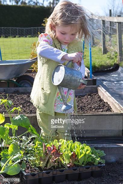 Petite fille arroser les plantes