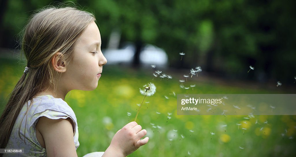 Little girl with a dandelion : Stock Photo
