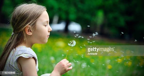Kleines Mädchen mit Löwenzahn