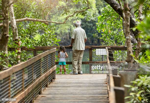 Little Girl with Grandfather looking at river from a viewing platform