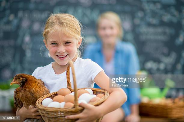 Little Girl with Her Chicken and Eggs