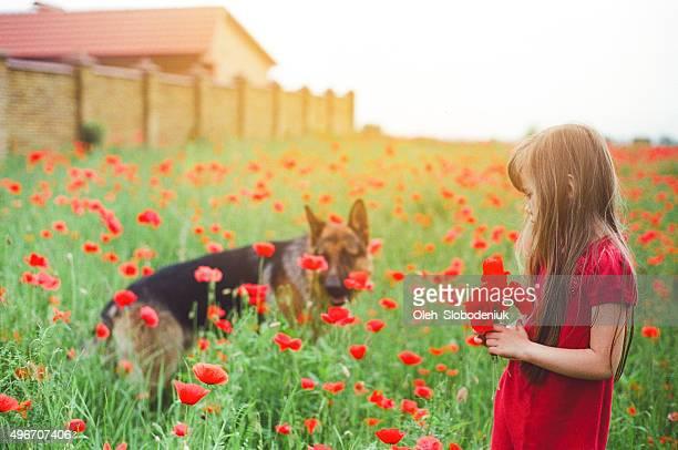 少女 poppies 付き
