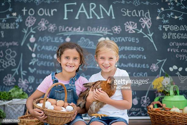 Little Girls Selling Eggs from Their Chicken