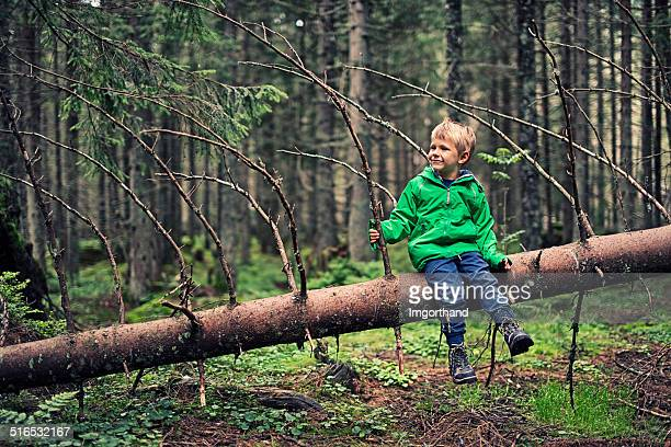 Little hiker resting on tree