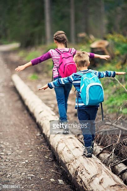 Jeunes randonneurs en équilibre sur Tronc d'arbre