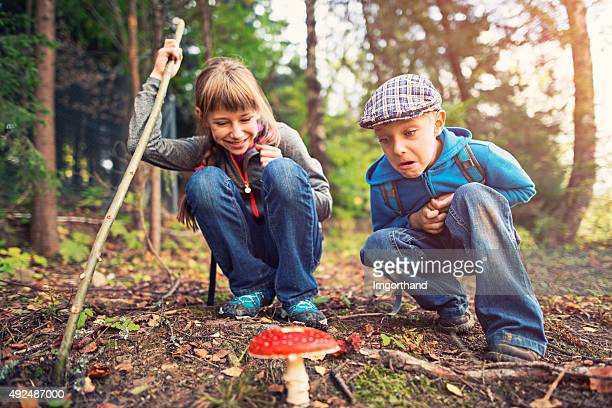 Little hikers have just found a toadstool