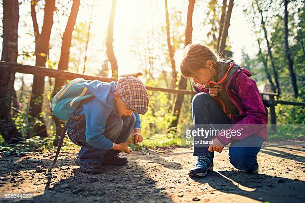 Little hikers observing little beetle on forest path