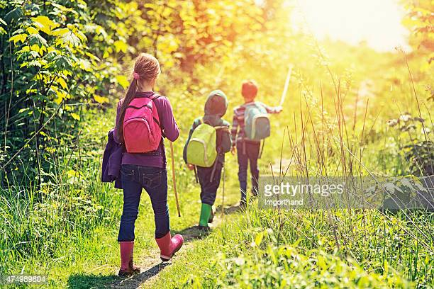 Little hikers walking on a sunny day