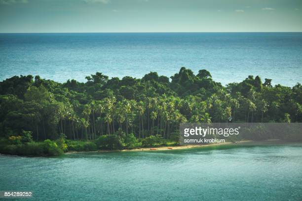 Little island with coconut tree