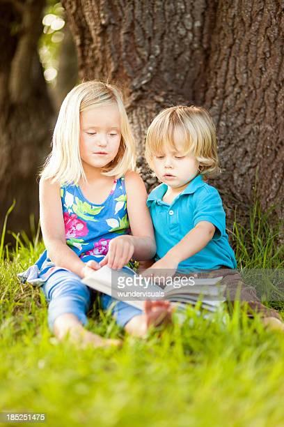 Enfants lire sous un arbre