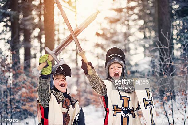 Little knights victory in frozen forest