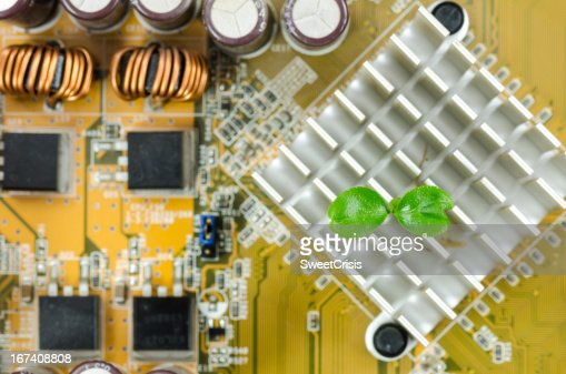Little plant in electronic : Stockfoto