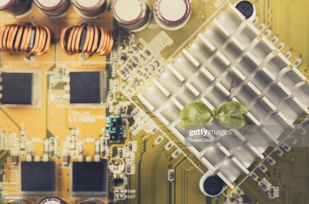 Little plant in electronic : Stock Photo