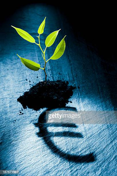 Kleine Pflanze projizieren euro-symbol