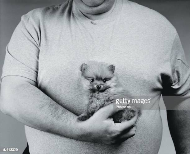 Little Pomeranian puppy in fat man's arms