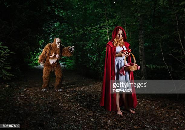 Le petit chaperon rouge perdue dans la forêt.