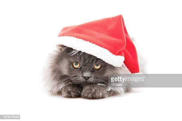 little santa Noël
