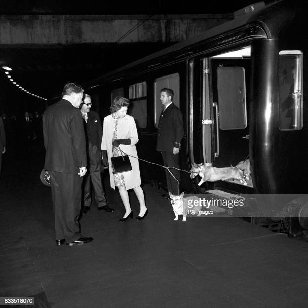 A little urging from the Queen and a reluctant corgi jumps down from the royal train at Euston Station Returning to London after her Scottish holiday...