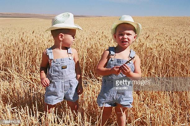 Little Wheat Farmers