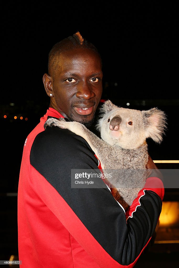 Liverpool FC player Mamadou Sakho cuddles Australia Zoo koala India at Gambaro Hotel on July 16, 2015 in Brisbane, Australia. Liverpool FC are in Queensland to play the Brisbane Roar at Suncorp Stadium on the first leg of their Australian tour