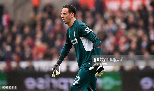 Liverpool goalkeeper Danny Ward looks on during the Barclays Premier League match between Swansea City and Liverpool at The Liberty Stadium on May 1...