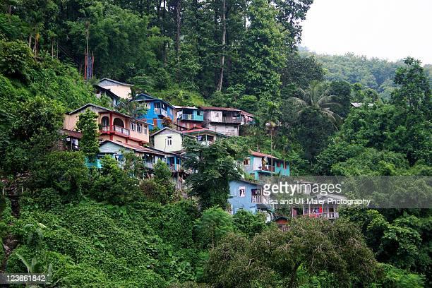 Living in  hills near Gangtok, India