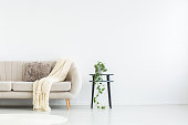 Bright blanket and pillow on settee next to stool with plant in living room with copy space on wall