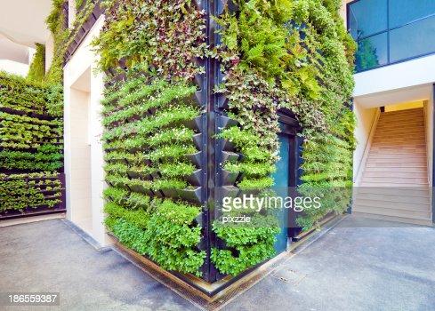 Living Wall Office Facade Corner