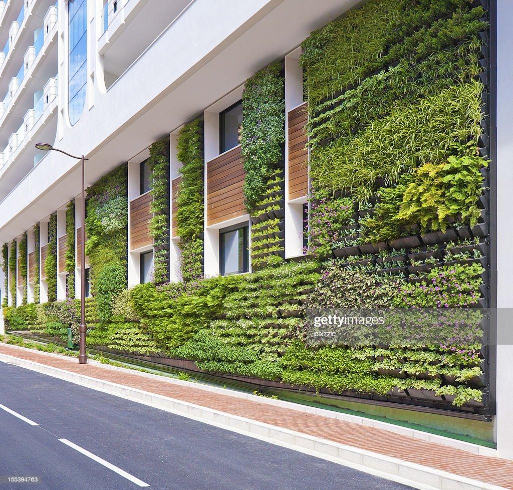 Living wall office vertical garden architecture stock for Living walls vertical gardens