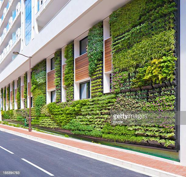 Living Wall office vertical garden Architecture