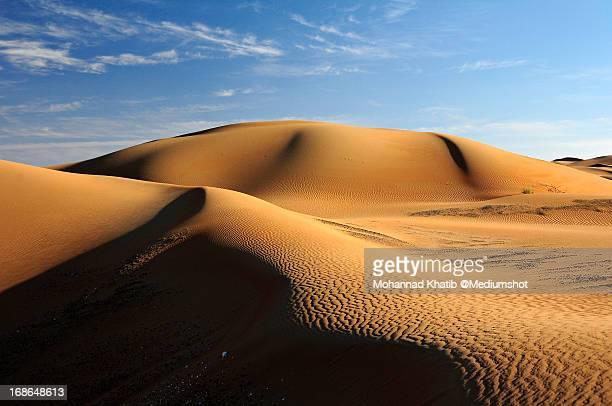 Liwa Desert , United Arab Emirates