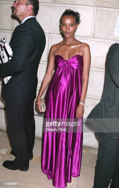 Liya Kebede during 2005 CFDA Fashion Awards Inside the Dinner Green Room Departures at New York Public Library in New York City New York United States