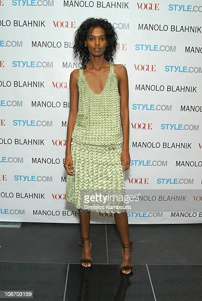 Liya Kebede during Launch Party For Manolo Blahnik Exhibition Hosted by Anna Wintour and Candy Pratts Price Presented by Stylecom at Phillips de Pury...