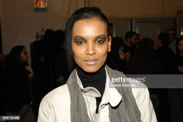Liya Kebede in beauty at the Luca Luca Fashion Show at The Tent Bryant Park on February 8 2004 in New York City