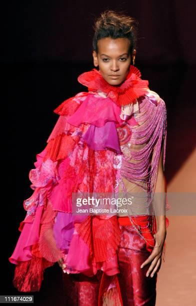 Liya Kebede wearing Ungaro Ready to Wear AutumnWinter 2004/2005