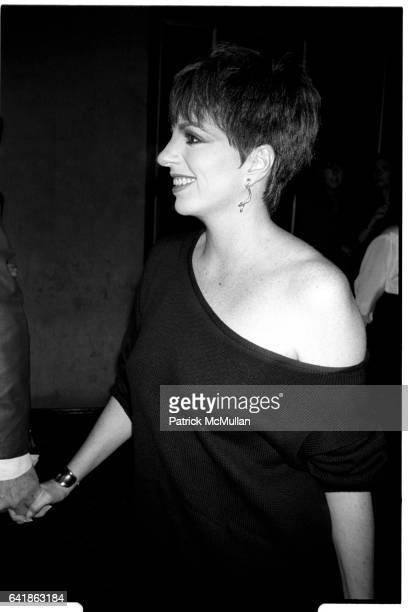 Liza Minnelli at the Old Gringo premiere at the Ziegfeld Theater October 5 1989