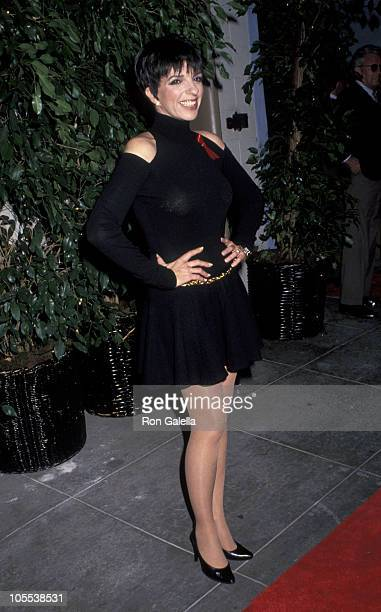 Liza Minnelli during 'Stepping Out' Los Angeles Premiere at Paramount Studios Theater in Hollywood California United States