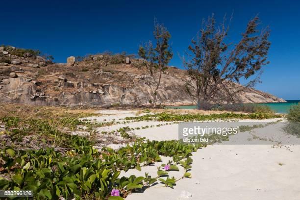 Lizard Island National Park Great Barrier Reef Australia