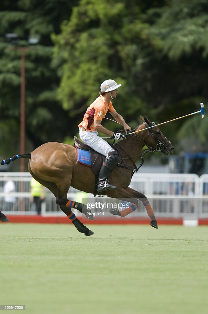 L.James of La Aguada Las Monjitas in action during a polo match between La Aguada Las Monjitas and La Aguada as part of the 119th Argentine Open Polo Championship, at the Campo Argentino de Polo on November 25, 2012 in Buenos Aires, Argentina.