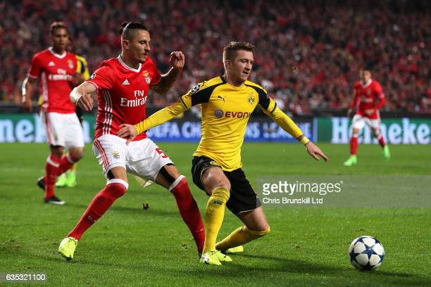 Ljubomir Fejsa of SL Benfica in action with Marco Reus of Borussia Dortmund during the UEFA Champions League Round of 16 first leg match between SL...
