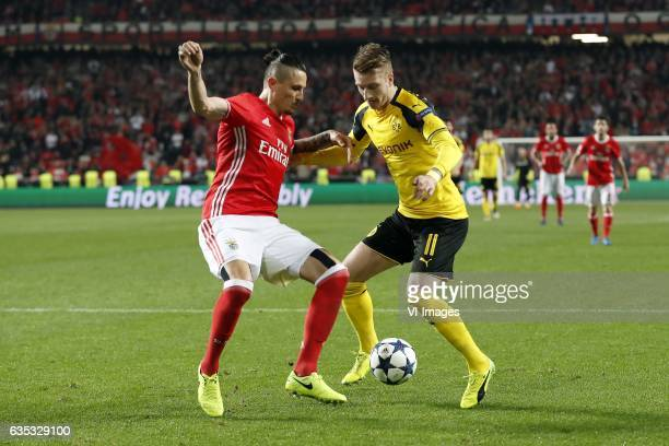 Ljubomir Fejsa of SL Benfica Marco Reus of Borussia Dortmundduring the UEFA Champions League round of 16 match between SL Benfica and Borussia...