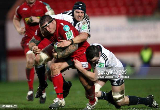 Llanelli Scarlets' Rhys Thomas is tackled by Munster's Peter O'Mahoney and Niall Ronan during the Heineken Cup match at Parc y Scarlets Llanelli