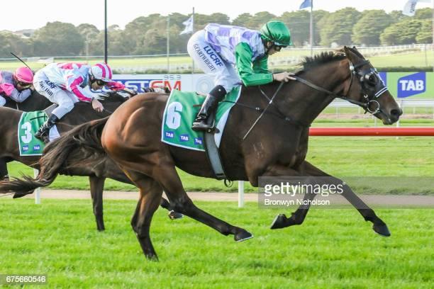 I'll'ava'alf ridden by Georgina Cartwright wins the Cally Hotel BM78 Handicap at Warrnambool Racecourse on May 02 2017 in Warrnambool Australia