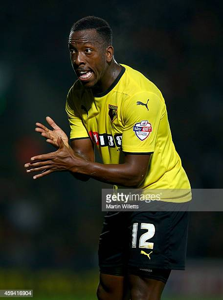 Lloyd Doyley of Watford during the Sky Bet Championship match between Watford and Derby County at Vicarage Road on November 22 2014 in Watford England
