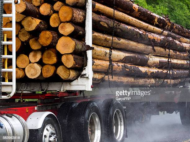 Loaded Log Truck Rural Road Port Angeles Washington State Close-up