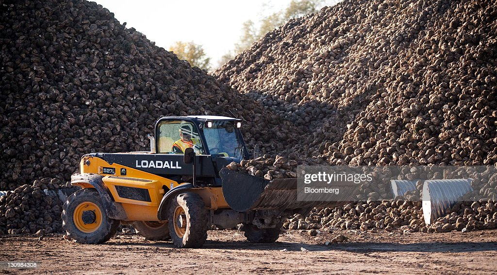 A loader moves sugar beets that are piled up after being harvested by the Michigan Sugar Co. in Bay City, Michigan, U.S., on Monday, Oct. 24, 2011. U.S. sugar supplies this year will fall to the lowest since record-keeping began in 1960 as consumption rises and a smaller beet crop limits supplies left from last season, according to a U.S. Department of Agriculture report released earlier this month. Photographer: Adam Bird/Bloomberg via Getty Images
