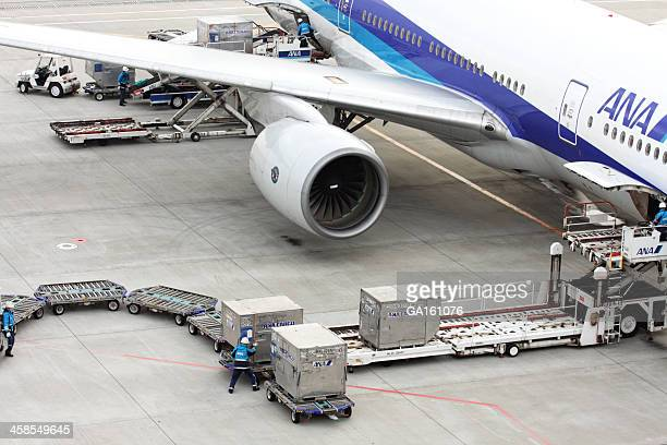 Loading cargo to ANA airplane at Haneda Airport