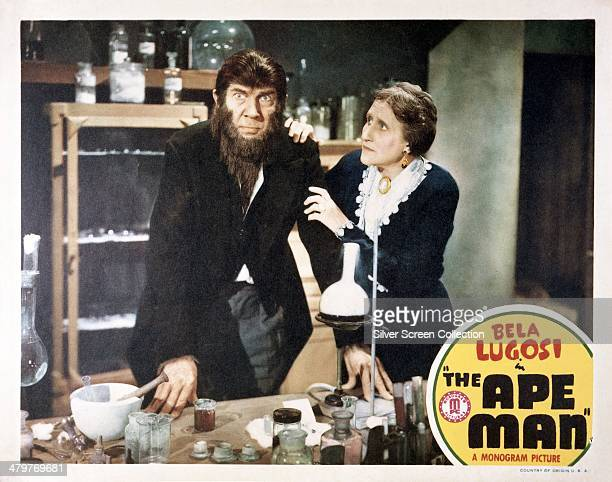 A lobby card for William Beaudine's 1943 science fiction horror film 'The Ape Man' featuring Bela Lugosi and Minerva Urecal
