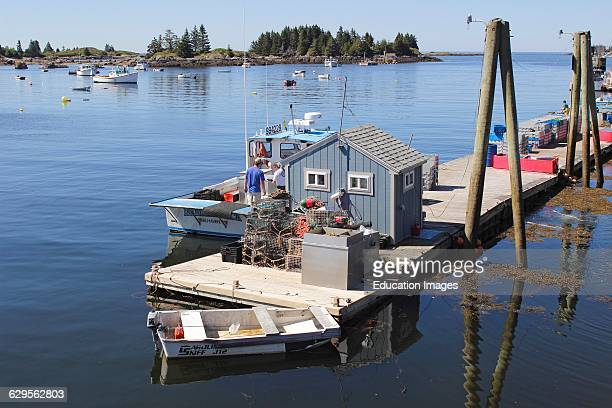 Lobster boats on floats in harbor Vinalhaven Island Maine New England USA
