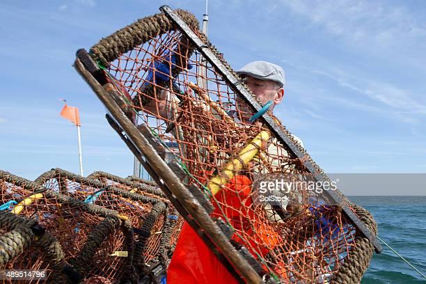 Pescador de langosta
